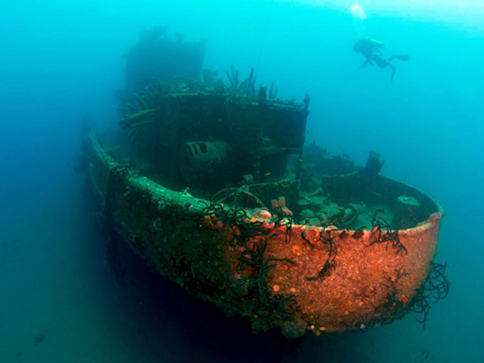Things to do in Monte Cristi Province - El Mandragora Shipwreck Manzanillo Bay, Dominican Republic